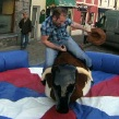 Mechanical Bucking Bronco